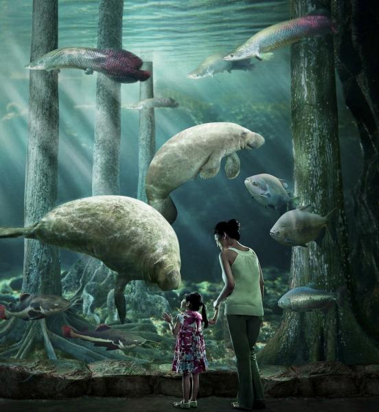 Commercial-Photographer-Singapore-Johna-Photography-River-Safari-2